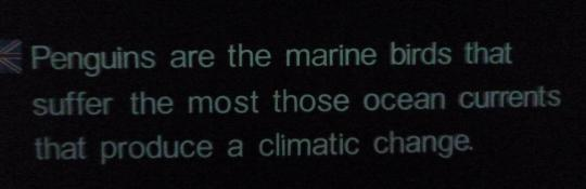 Snapshot from a explaining wall in the Loro Parque, the only one I found mentioning climate change