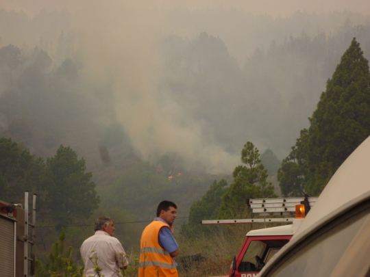 A photograph of the wildfire in La Palma during August 2012, image taken from the road